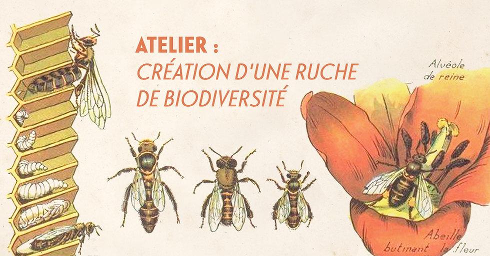 ruchebiodiversité_fb.jpg