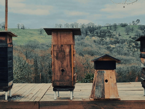 ATELIER : création d'une ruche de biodiversité - samedi 6 mars 2021