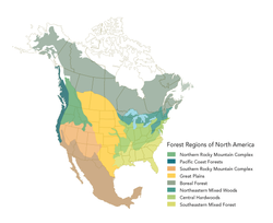 MT Forest Regions Map
