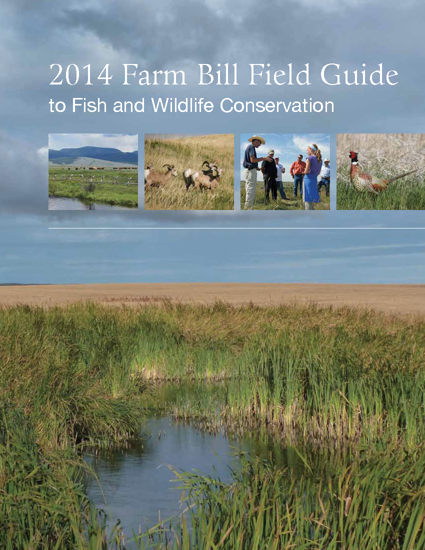 Pages from Farm Bill Guide