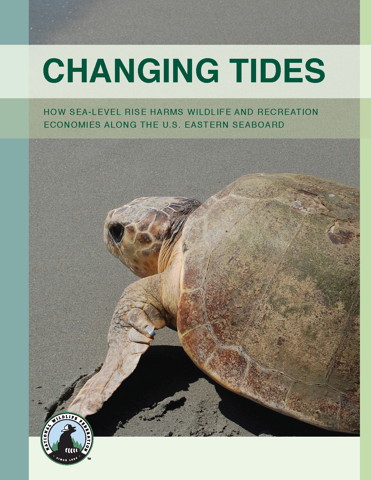 Pages from NWF-Changing Tides