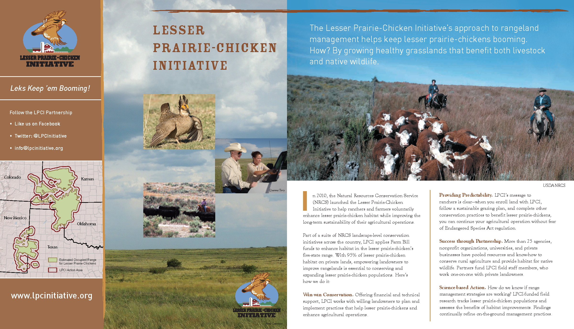 LPCI Brochure-REVISED-020316