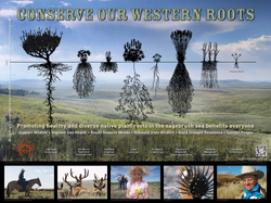 Conserve our Western Roots Poster-FINAL HIGH RES FOR PRODUCTION-042516