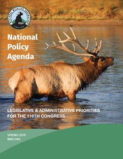 Cover_NWF_ Agenda