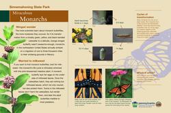Miraculous Monarchs-REVISED-0709