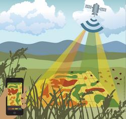 Precision Rangelands Monitoring App Grap
