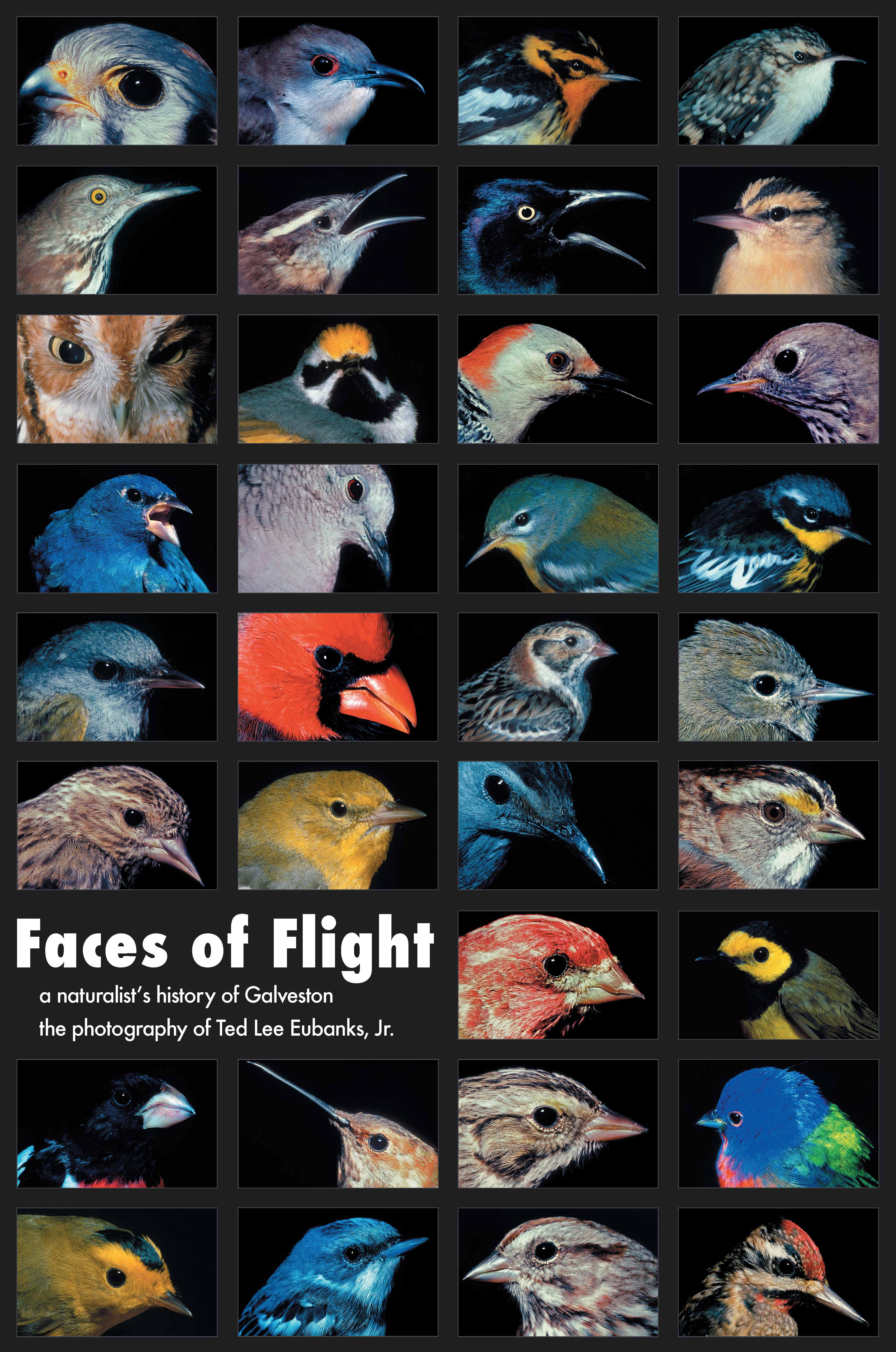 Faces of Flight Poster 012807 copy