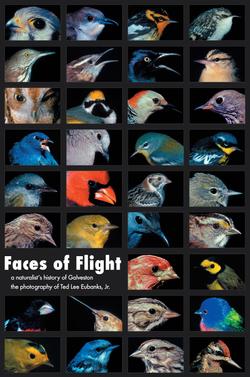 Faces of Flight Poster 012807 copy