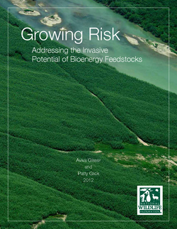 Pages from NWF-Growing Risk