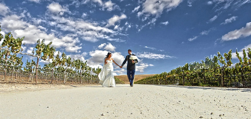 Bay Area Wedding Video, Bay Area Wedding Cinema, Coelho Video Production