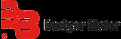Badger Meter RED Logo Horizontal_informa