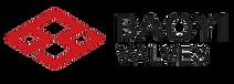 Baoyi Logo.png