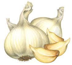 LeAnn's Gourmet Onion & Garlic Dip