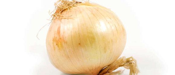 LeAnn's Gourmet Vidalia Onion Dip