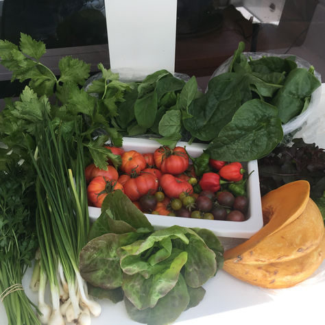 Local organic veg, good for you & delicious too!