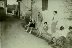 포도따기1989