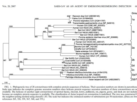 Study in the Year 2007: Taxonomy and Virology OF SARS-CoV
