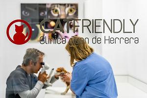 javierdelatorresebastian_Veterinary Clin