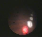Captura de pantalla 2015-04-20 a las 22.