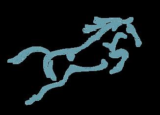 David Platt | Equine Vet