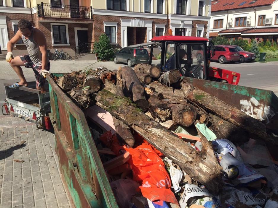 Отчет о 6 уборке леса