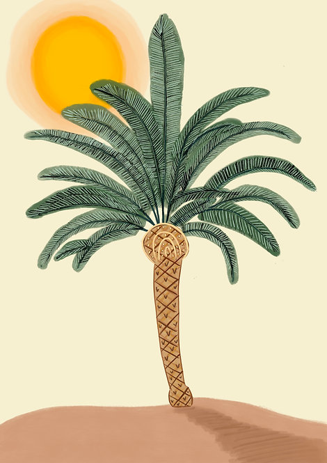 Pippy & Co. | Palm in the Sun Illustration