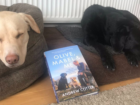 Book REVIEW: Olive, Mabel & Me by Andrew Cotter - ★★★★★
