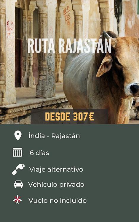 RUTA RAJASTÁN - INDIA