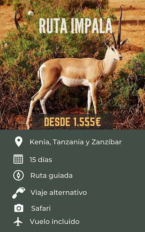 RUTA IMPALA - KENIA, TANZANIA Y ZANZÍBAR