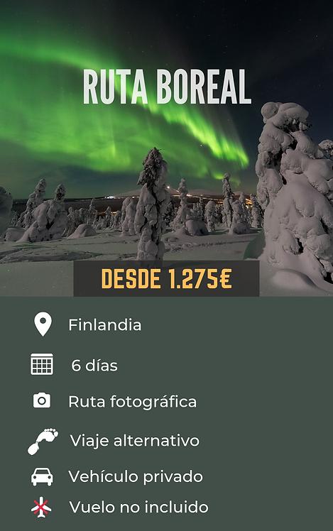 RUTA BOREAL - FINLANDIA