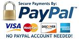 Pappal Visa Card Logo.png