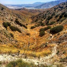 Desert Climbs