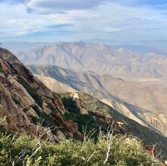 One of the first desert vistas