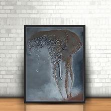 Feeling of Africa - Elephant in situ .