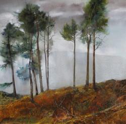 Seasonal Mist