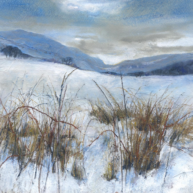 Border Hills, Winter