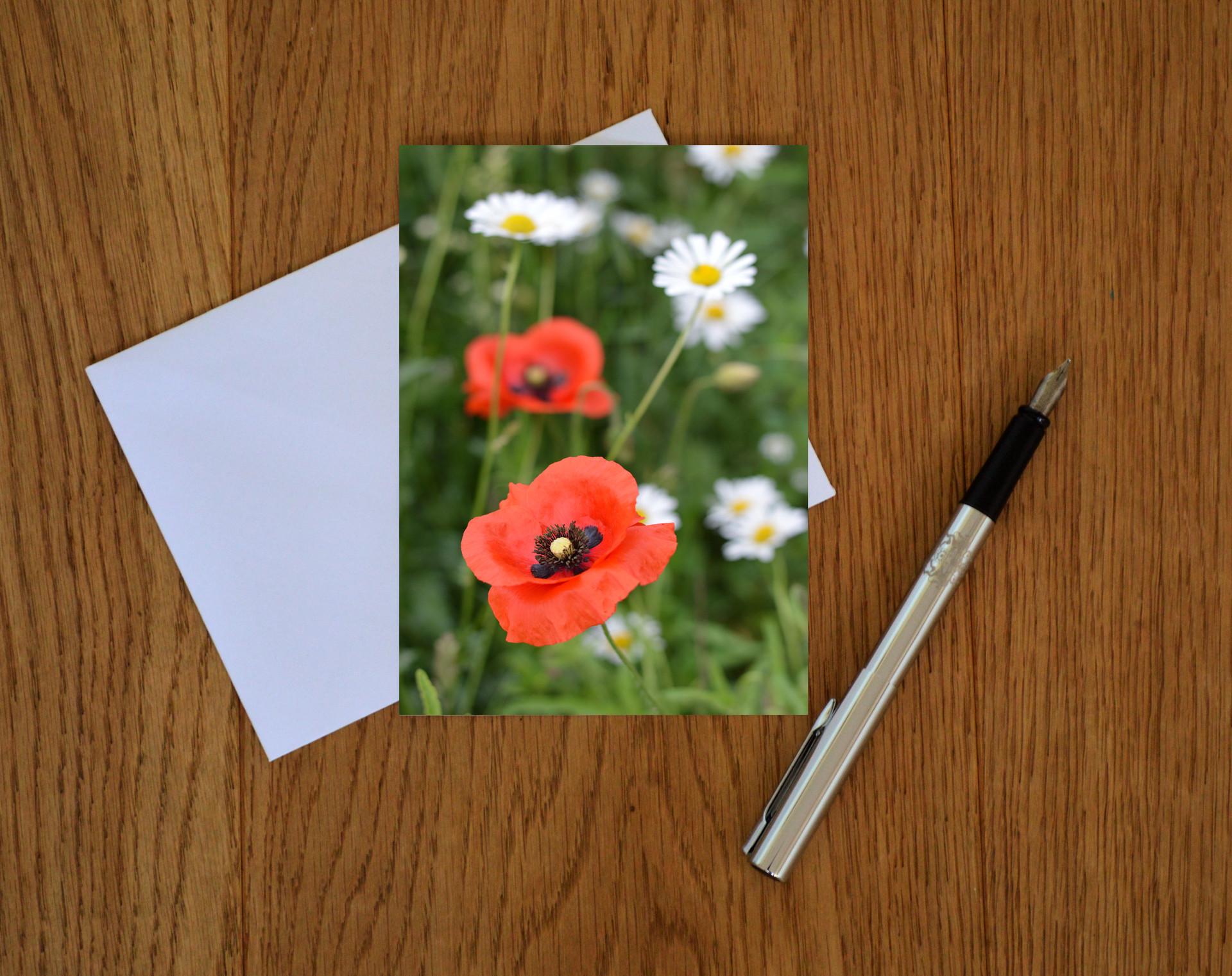 Wildflower 8 (web image of card).jpg