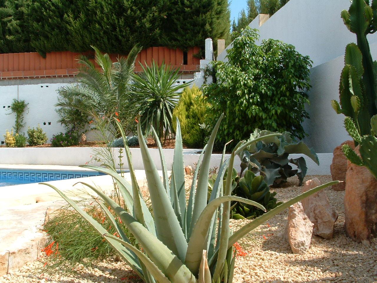 New-Garden2