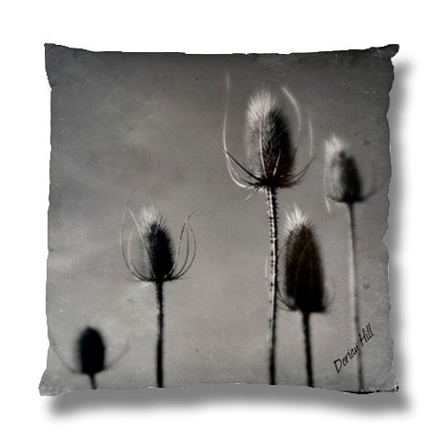 Winter Thistle Cushion Case