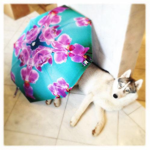 NEW! Pinkie Funbrella Umbrella