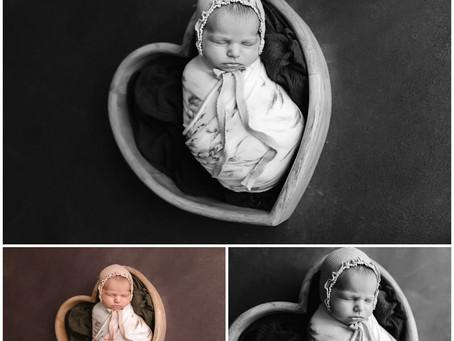 Amelia-Newborn