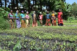 Tanzania planting 3.JPG