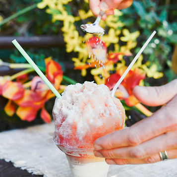 ParadICE Shave Ice