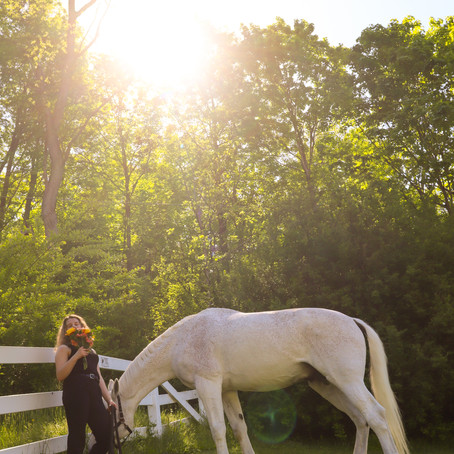 Nelli | Grier Equestrian Photoshoot