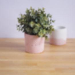 Colored concrete plant pot