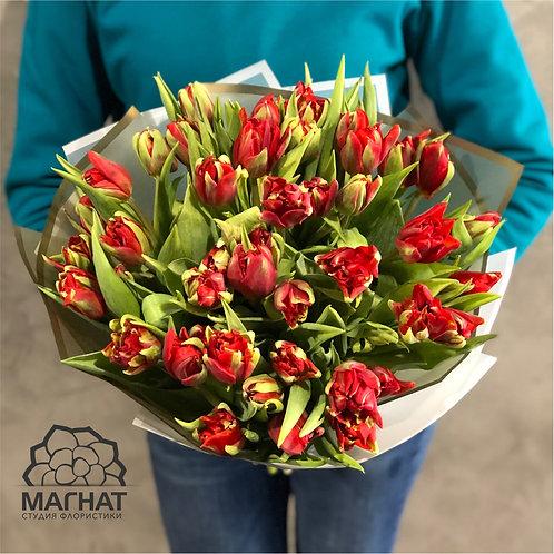 "25 Тюльпанов ""Ред Принцесс"""