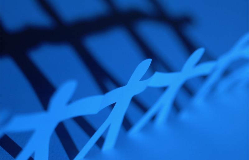 Nettverk vokser med videomøter