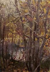 54 Темная вода (Медведково), 1978, карто