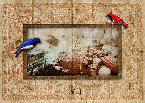 A letter from Cape Horn - Levél a Horn fokról