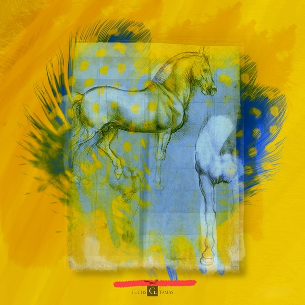 Lithographia-horse